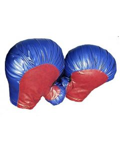Boxing Gloves (4) w/bag | A301